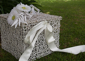 A surprise wedding gift - release a pair of white doves