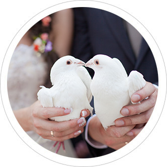 White dove wedding release service